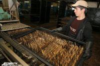 Запретить ввоз консервов из Прибалтики калининградские производители просили еще три месяца назад.