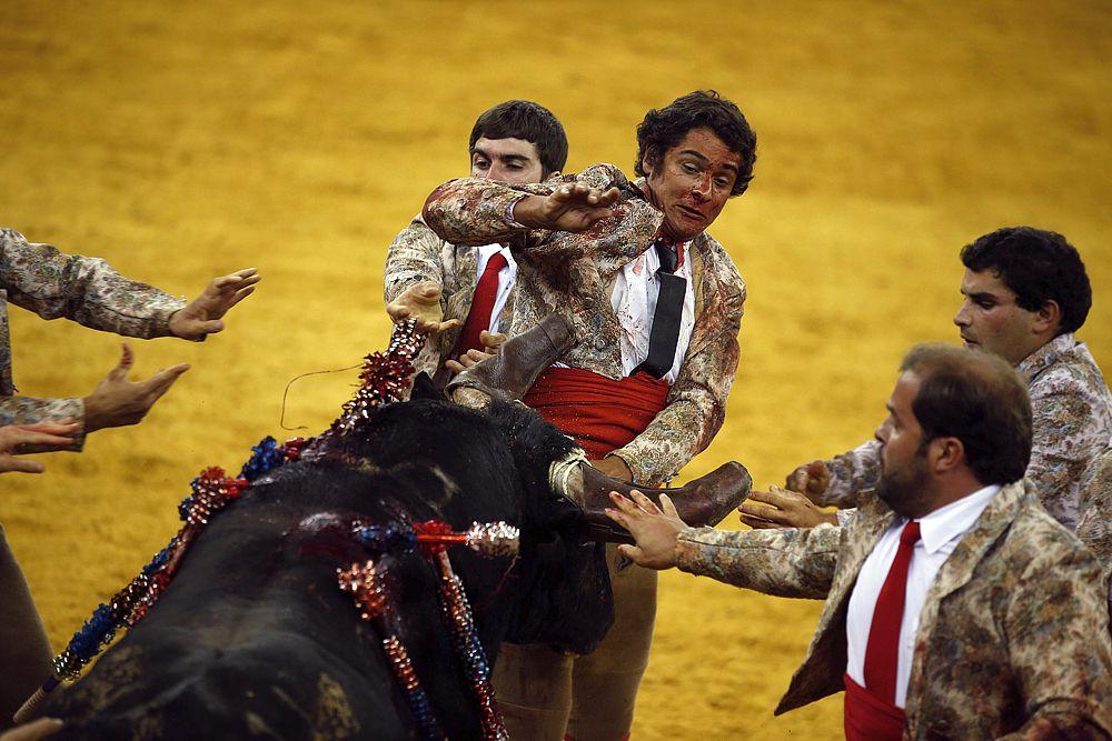 Только за последние двадцать лет под копытами быков погибли шесть тореадоров.
