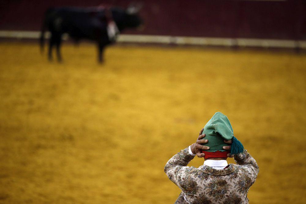 В корриде участвуют быки возрастом не менее 4 лет (и, как правило, не более 6). Иногда регламентируется масса быка (не менее 450 кг).