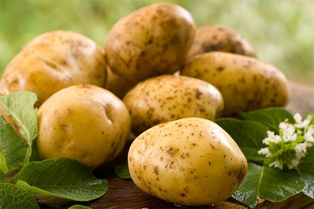 Партию картофеля из Казахстана не пустили в Новосибирскую область