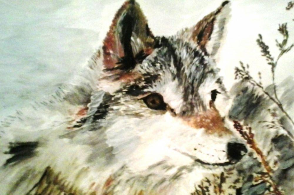 Волк. Рисунок.