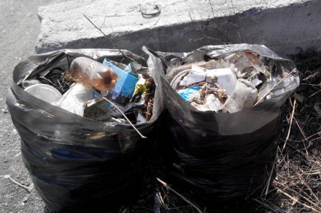 Новосибирцы ликвидируют экологическую катастрофу рядом с дендропарком