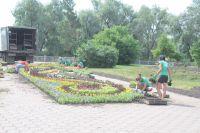 Тысячи цветов украсят Омск.
