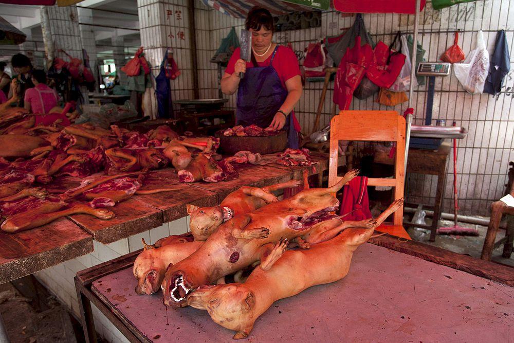 18 июня. Мясной рынок в городке Юлин, где 21 июня стартует ежегодный фестиваль собачьего мяса.