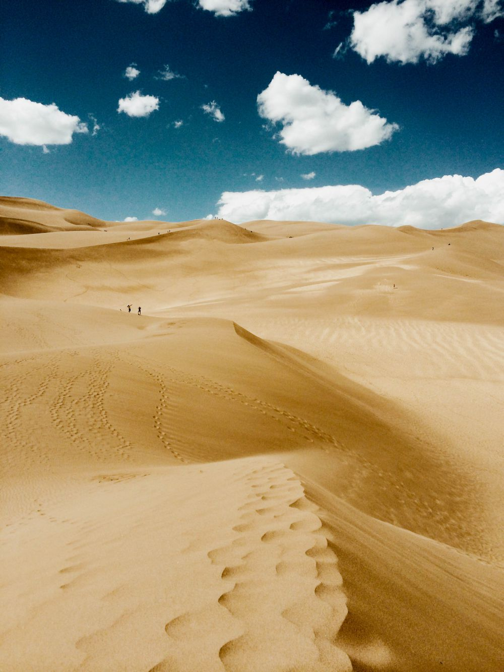 Лучшим пейзажем признали работу Крис Бельчина из США. Крис — фотограф-самоучка. Фото, принесшее ему победу, было сделано в национальном парке Грейт-Санд-Дьюнс в Колорадо.