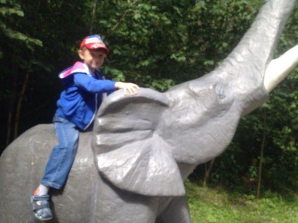 Участник №3 - Данила Мещеряков, 6 лет