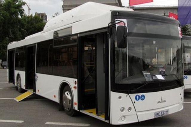 в Липецке автобусы изменят