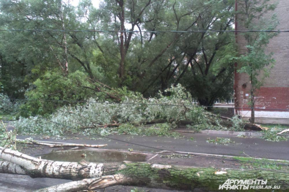 Из-за урагана пострадали провода