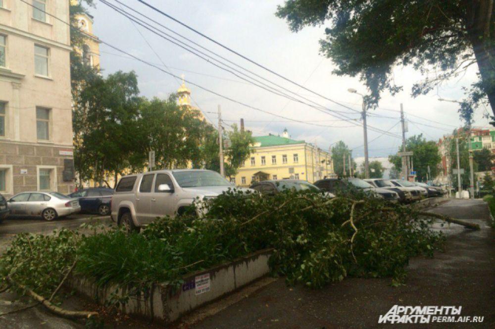 Последствия урагана в центре Перми не такие серьезные. Однако и здесь можно увидеть сломанные ветки