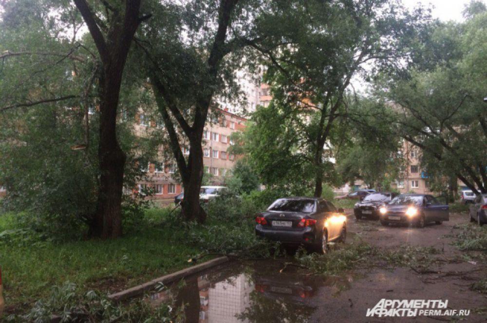 Сломанные ветром деревья валяются во многих районах города