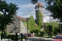 Многие стены домов в Светлогорске увиты виноградом.