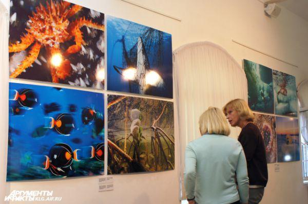 Посетителям выставки обещают путешествие в подводный мир, по морям и океанам.