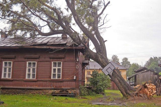 Не так давно такой же ураган прошел в Свечинском районе.