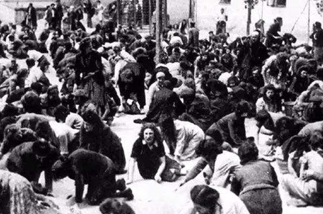 Жертвы Львовского погрома.