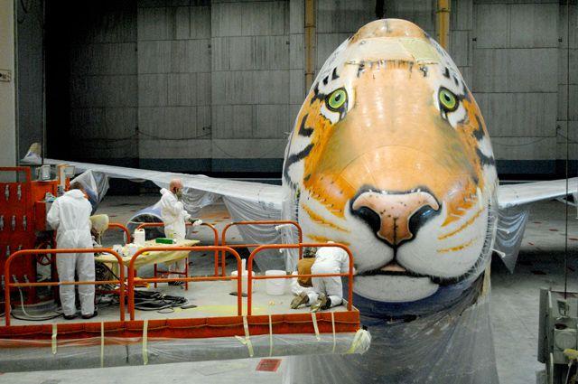 Художники работают на площадке, зависшей перед носом лайнера