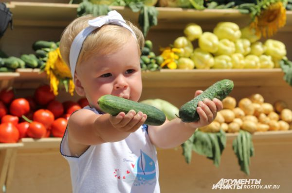 Любовь к огурцу у багаевцев прививается с детства.