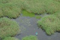 При помощи вертолета рыбак был найден в считанные минуты.