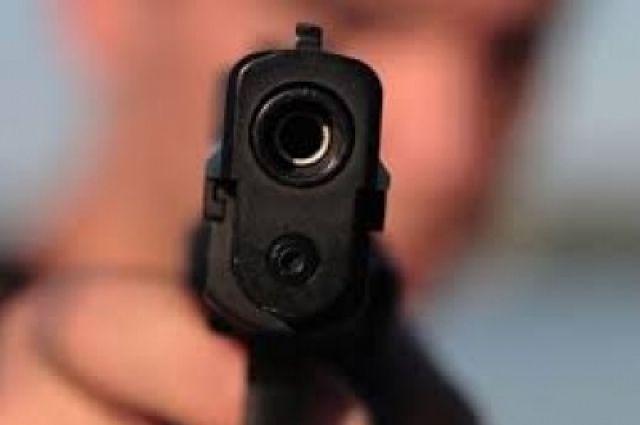 Полицейский применил табельное оружие.