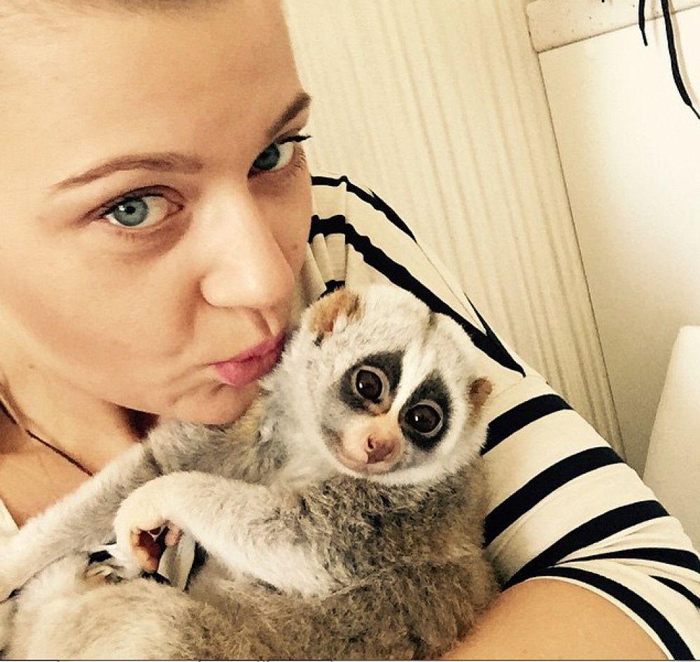Ирина Гончарова приютила маленького толстого лори в двухмесячном возрасте.