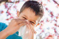 Насморк часто - это симптом не простуды, а поллиноза.
