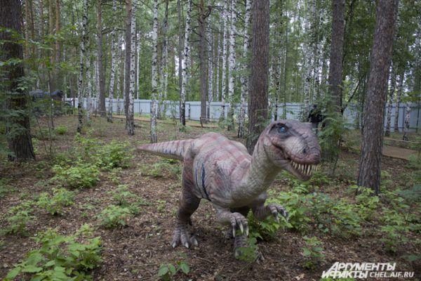 Детёныш тиранозавра