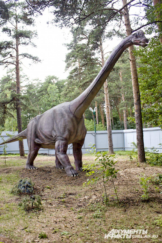 Динозавр Брахиозавр