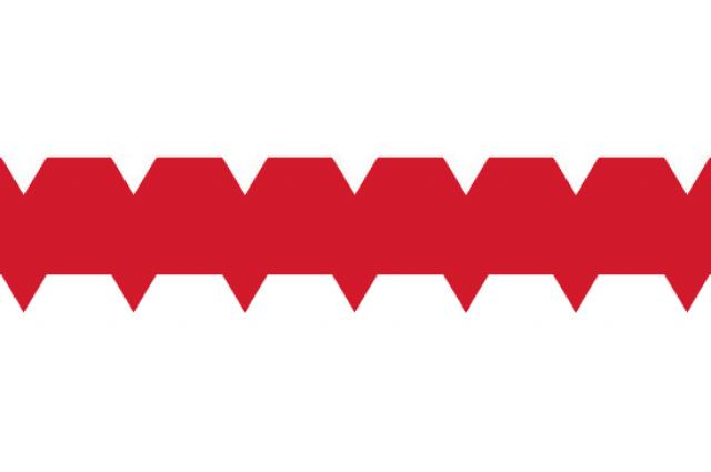 Флаг Омска нового образца.
