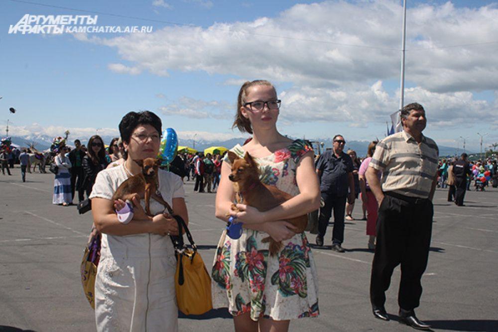 В хорошую солнечную погоду камчатцы пришли на праздник со своими питомцами.