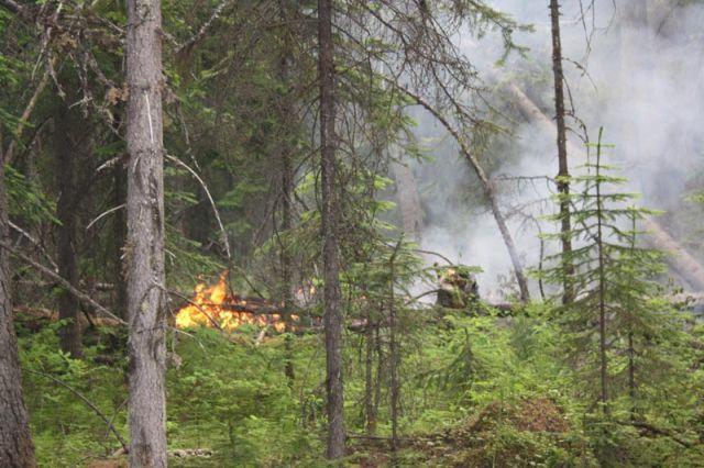 Количество лесных пожаров на Среднем Урале уменьшилось в два раза