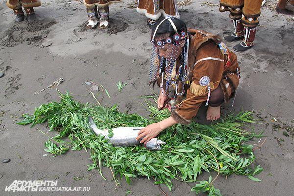 Для проведения обряда костный хребет и требуху привязывают к косе, сплетенной из травы.