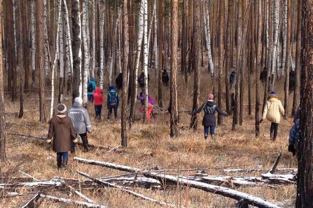 Осуществляя поиск заблудившегося в лесу, следует держаться рядом.