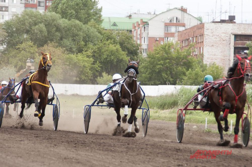 В Омске прошёл конный турнир «Большой сибирский круг».В Омске прошёл конный турнир «Большой сибирский круг».В Омске прошёл конный турнир «Большой сибирский круг».