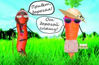 Местная немытая морковь по цене почти сравнялась с импортной, которую продают втридорога.