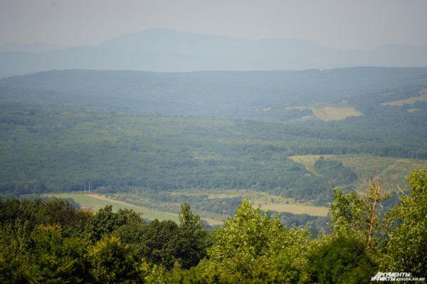 Вид с чайной плантации.