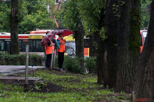 Троллейбусы встали из-за непогоды.