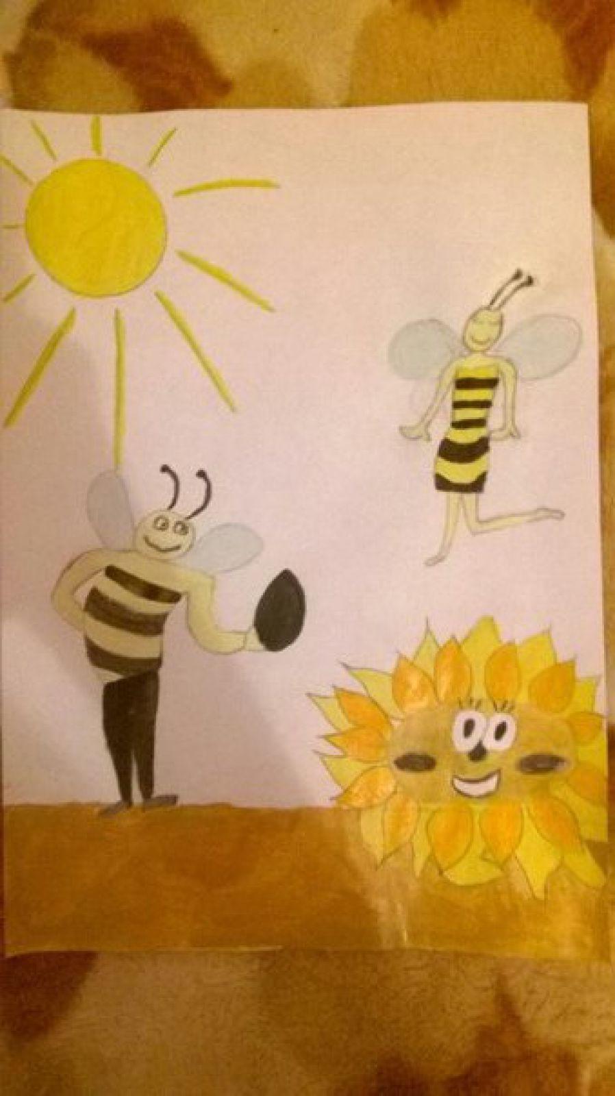 Рисунок № 13
