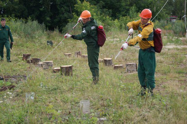 Лучший лесной пожарный выбран на Среднем Урале