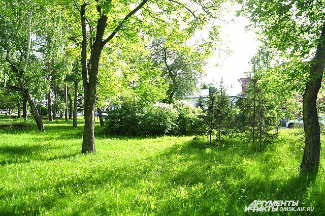 В Омске будет больше зелени.