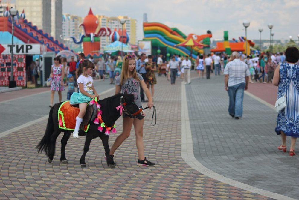 И пони тоже кони!