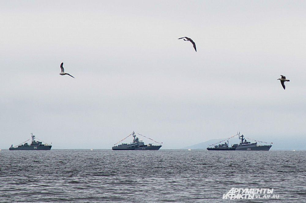 Корабли выстроились в парадном строю на рейде Амурского залива.