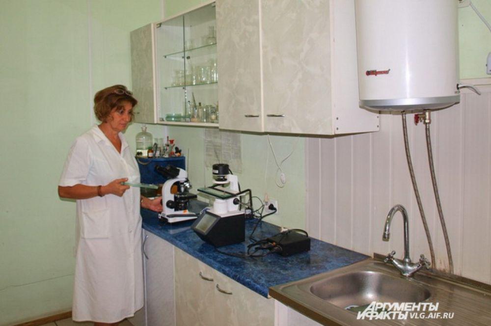 Лаборатория ветеренарно-санитарной экспертизы на сельскохозяйственном Тракторозаводском рынке считается лучшей не только в нашем регионе.