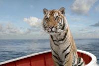 Тигр в фильме «Жизнь Пи».