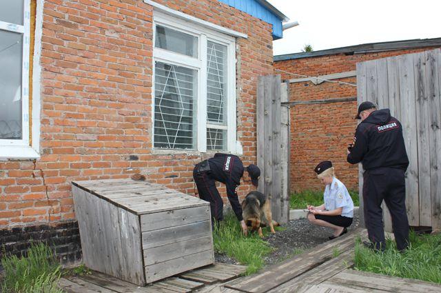 Собака взяла след грабителей.