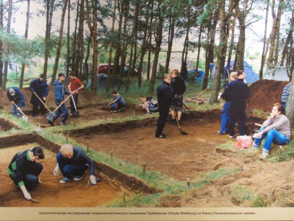 Археологические раскопки поселения Прибрежное на берегу Калининградского канала.