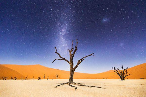 Фото знаменитой долины Deadvlei принесло победу фотографу Бету Маккарли. Снимок занял четвертое место в фотоконкурсе National Geographic