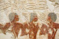 Крестьяне в основном питались злаками - жатва в Древнем Египте.