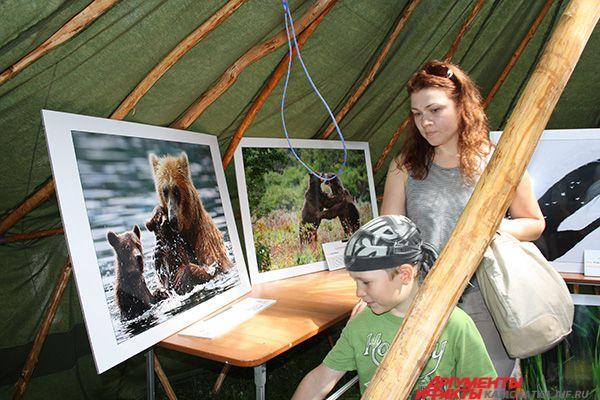 Все желающие могли посетить выставку лучших фотографий дикой природы «Золотая черепаха».