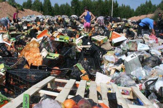 На следующий после уничтожения санкционных фруктов день на полигоне был настоящий аншлаг.