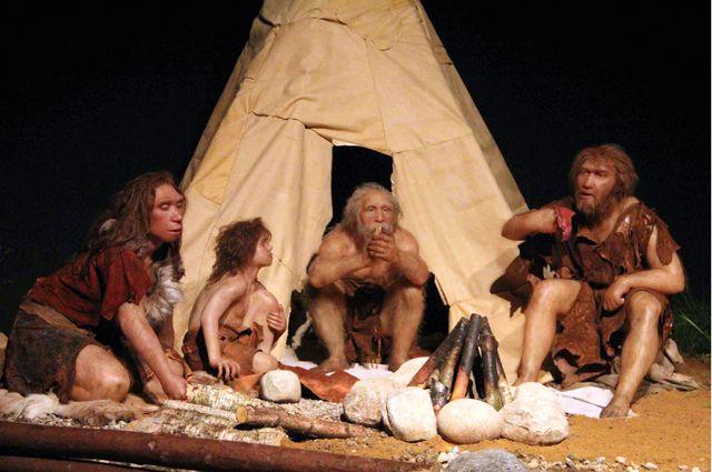 Ученые определили вкаких условиях жили обитатели Чагырской пещеры