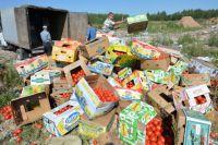 Во всей стране уничтожают санкционные продукты.